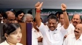 panneer selvam know jayalalitha daughter