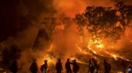 wildfire in america