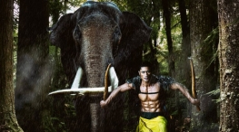 vidyut jammwal injured on junglee movie