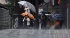 சூரியன் உதிக்கும் நாடான ஜப்பானை ஜாங்க்டரி புயல் கடுமையாக தாக்கி வருகிறது. இது வரை 30 க்கும் அதிகமானோர் பலத்த காயம் அடைந்துள்ளதாக தகவல் வெளியாகியுள்ளது.