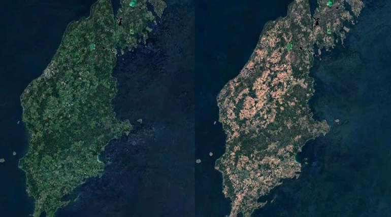 காட்டுத்தீயினால் ஸ்வீடனில் கடந்த 74வருடங்களில் இல்லாத அளவிற்கு கடுமையான வறட்சி நிலவி வருகிறது. Photo Credit : Rymdstyrelsen/Google/Esa