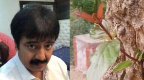 நடிகர் விவேக், தன்னுடைய டிவிட்டர் பதிவின் மூலமாக 100 வருட பழமையான கடம்ப மரத்தை மீண்டும் துளிர் விட செய்துள்ளார்.